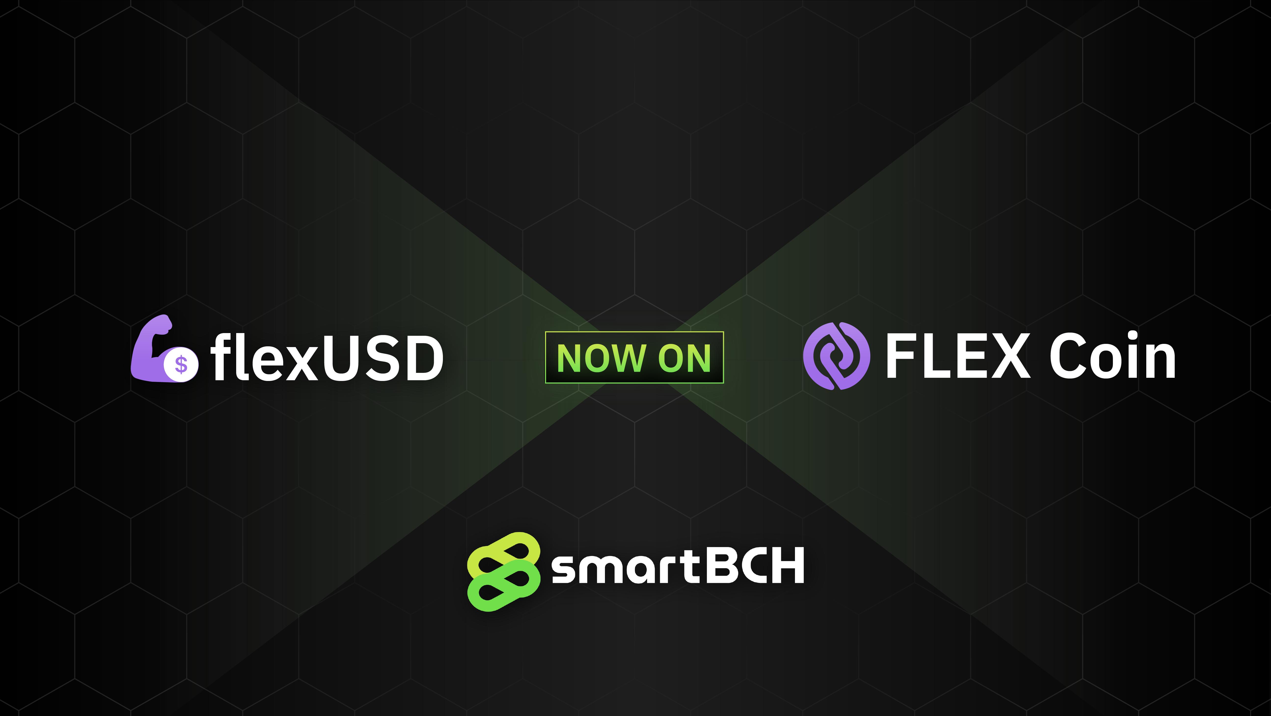 flexUSD FLEX SmartBCH